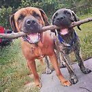 Bull and English Mastiff by Wendy Crouch