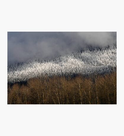 Snow in the Hills Photographic Print