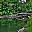 Filmore Glen State Park V HDR by PJS15204