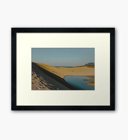 Japanese Oasis Framed Print