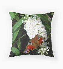 European peacock butterfly (Inachis io) on white butterfly bush (buddleia) Throw Pillow