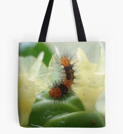 Little Chewi - Orange and black caterpillar Tote Bag