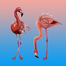 Flamingos von undergrass