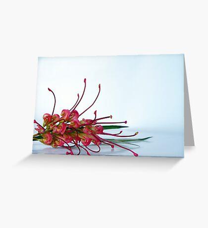 Australian flora Greeting Card