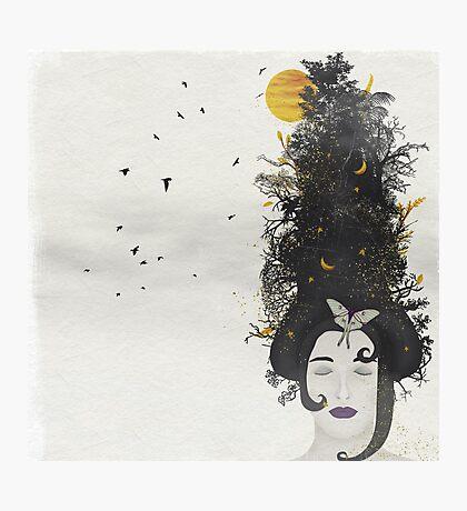 Rococo: The Black Queen Photographic Print
