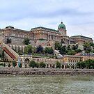 Castle of Kings  by Lanis Rossi