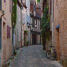 Small Cobblestone Street in Montignac - Dordogne - France by Buckwhite