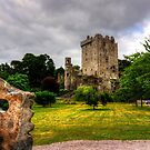 Blarney Castle and Grounds by Tom Gomez