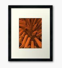 Orange Pokers-(Macro)-2 Framed Print