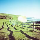 Seven sisters - Pinhole photography by willgudgeon