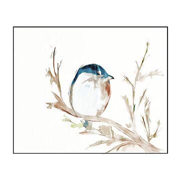 Baby Blue Bird Dreams by Spottedlongneck