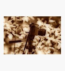 Camera Love Photographic Print
