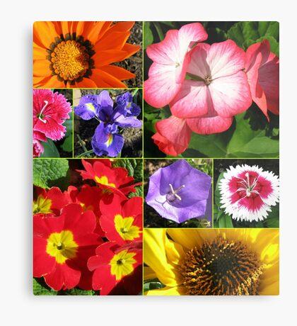 Sunkissed Blumen-Collage Metallbild