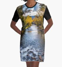 Bright river Graphic T-Shirt Dress