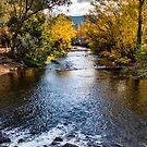 Bright river by Aiin Ojani