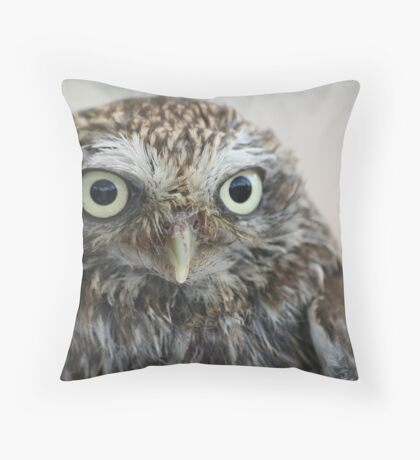 Taking It All In Throw Pillow
