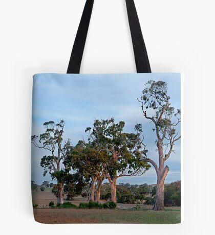 Dusk,Rowsley Valley Tote Bag