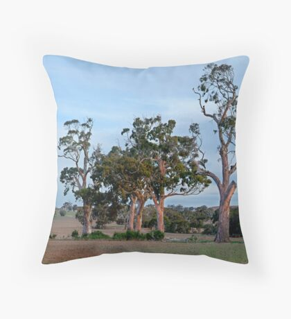 Dusk,Rowsley Valley Throw Pillow