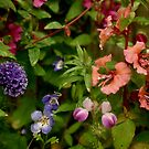 Wildflower Garden In The Morning by Lynda Anne Williams