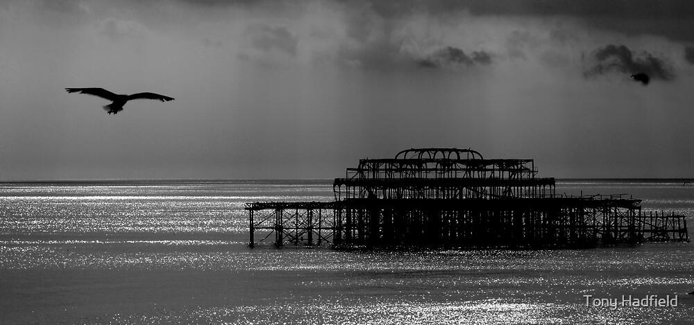 West Pier Brighton 1 by Tony Hadfield