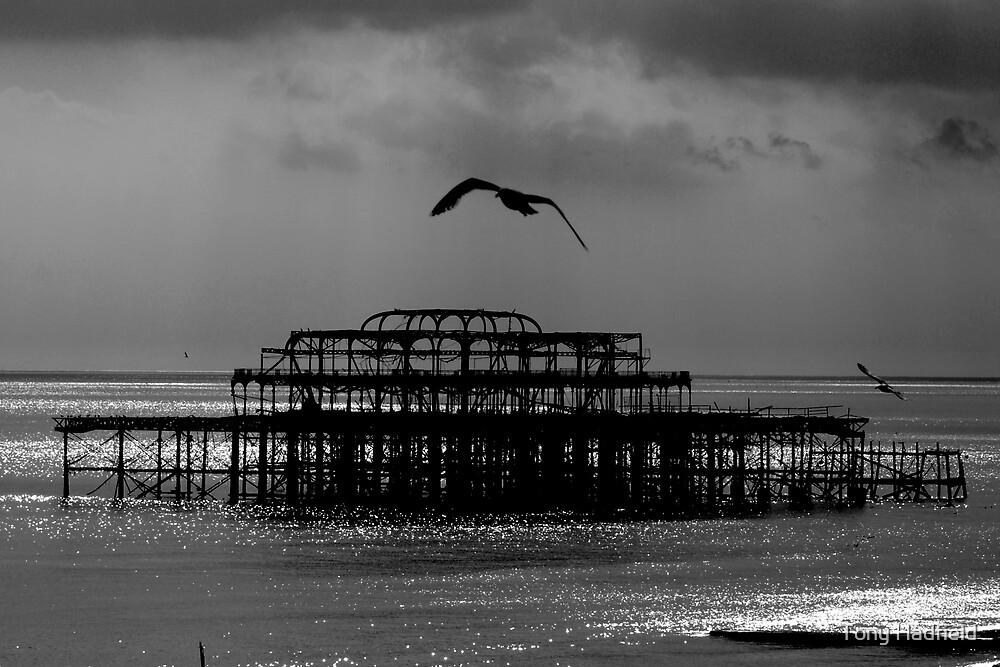 West Pier Brighton 2 by Tony Hadfield