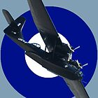 Roundel Series - Catalina VH-PBZ 20100918 by muz2142
