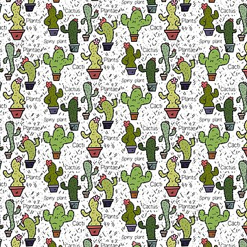 Cacti by Noly
