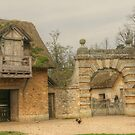 The Well, The Arch & The Rooster by Michael Matthews
