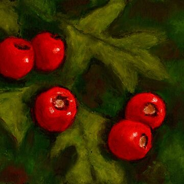 Hawthorn Berries in Oil Pastel, Red and Green, Christmas by Joyce