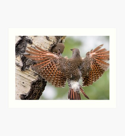 Flicker Breakfast On The Way, with Flare Art Print