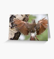 Flicker Breakfast On The Way, with Flare Greeting Card