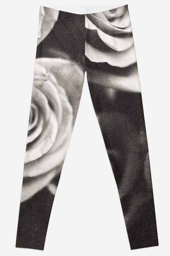 Medium format analog black and white photo of white rose flowers by edwardolive