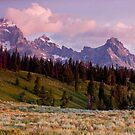 The Grand, Teewinot, and Mt. Owen... the Tetons by A.M. Ruttle