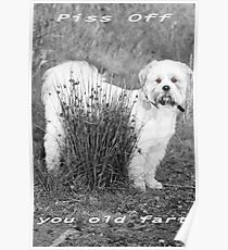 Piss Off You Old Fart Poster
