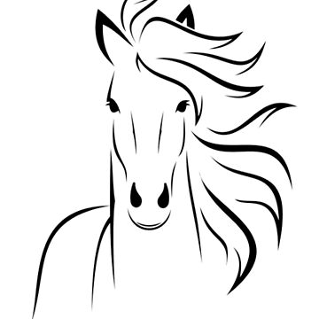 Horse, on white by TOMSREDBUBBLE