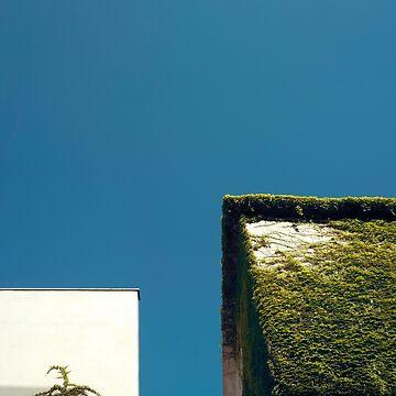 White Square, Green Square, Blue Sky by josemanuelerre