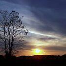 Sunset by debbiedoda