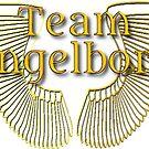 JK Allen's Team Angelborn by OurWriteSide