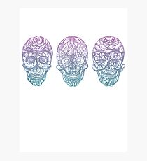 Candy Skulls Photographic Print