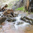 Vertical Pano Of Creek near Bell's Rapids by Tim Slade