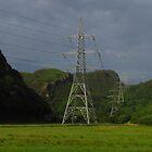 Pylons, Llandecwyn, Wales by wiggyofipswich