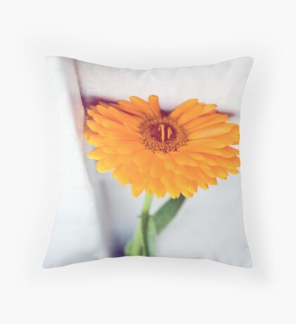 comfort seeker Throw Pillow