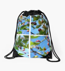 Rosehips - Polyptych Drawstring Bag