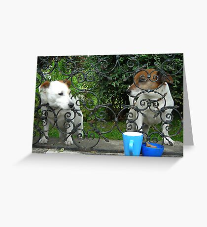 Tea for two? Greeting Card