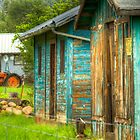 Blue Barn by Randy Turnbow