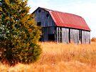~Arkansas Barn~ by NatureGreeting Cards ©ccwri