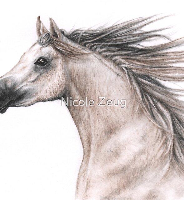 Arabian Stallion by Nicole Zeug