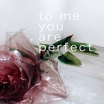 LOVE QUOTE 'TO ME YOU ARE PERFECT' GRAIN PHOTOGRAPH // DOVER STREET MARKET TOKYO JAPAN by lovejeanella