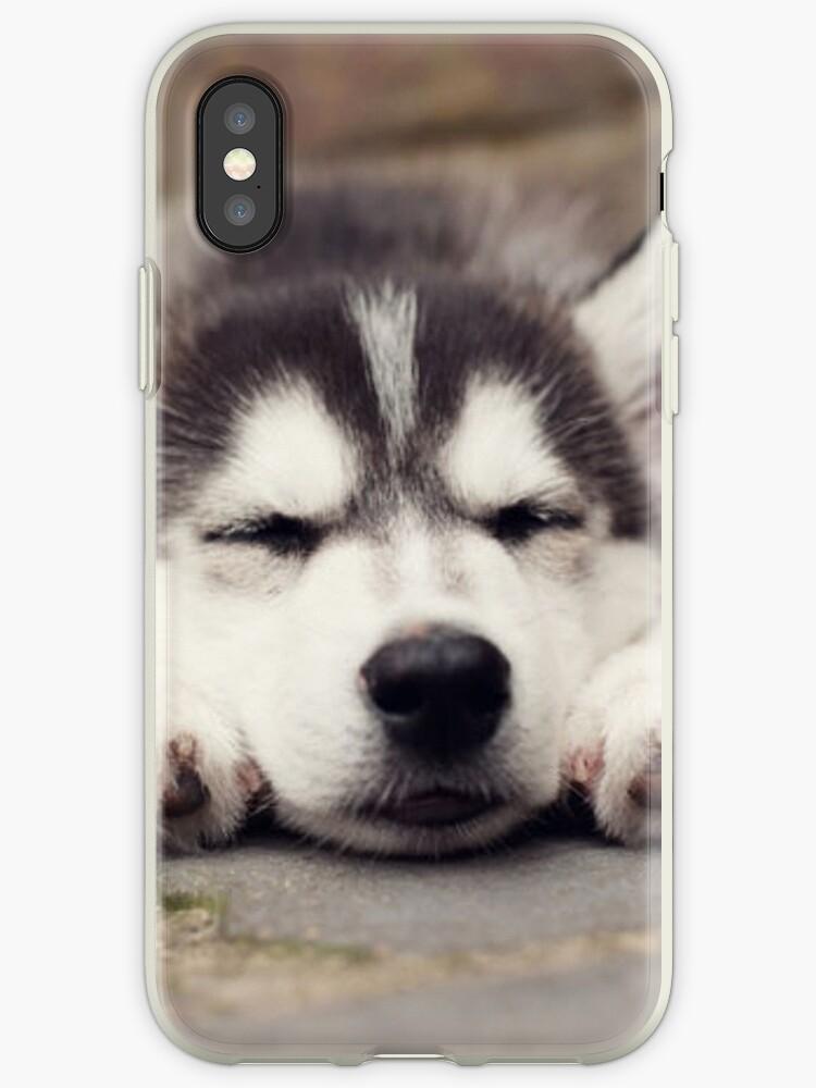 Husky by JakeAMG