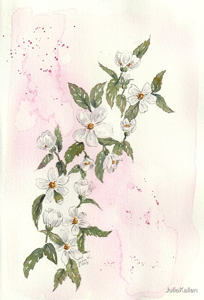 Apple blossoms watercolor by JuliaKallen